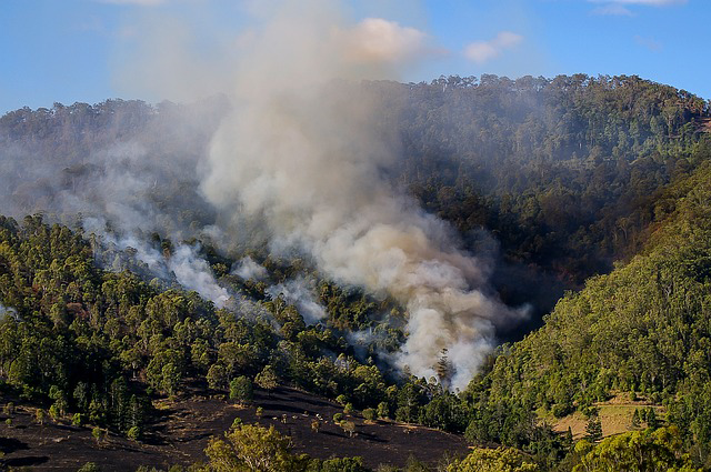 Environmental Applications Wildfires