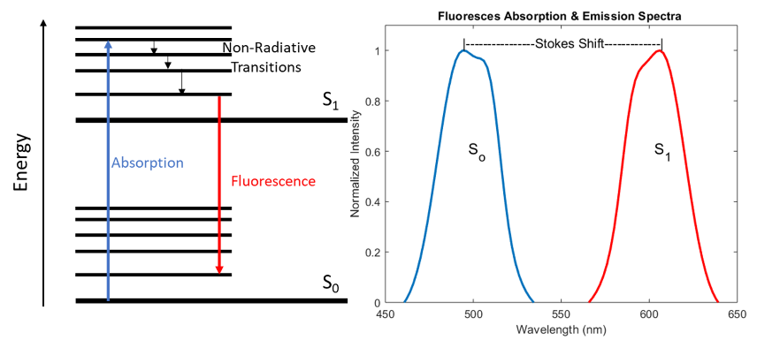 Fluorescence Theory System Design Figure 1