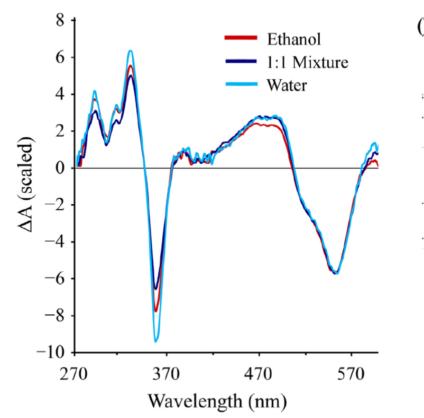Transient Absorption Spectroscopy Figure 8